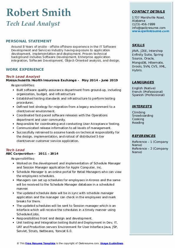 Tech Lead Analyst Resume Sample