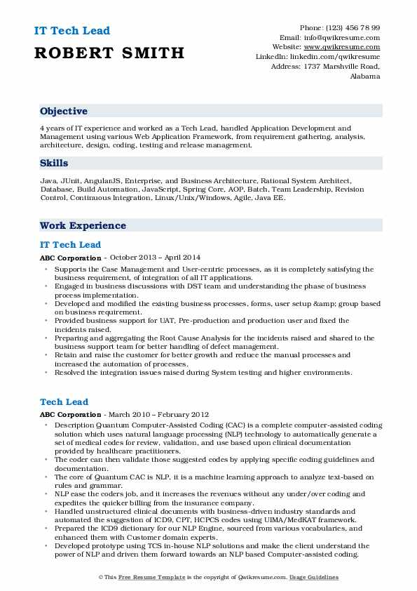 IT Tech Lead Resume Example
