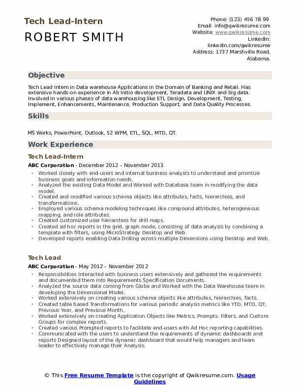 Tech Lead-Intern Resume Model