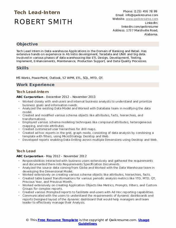 Tech Lead-Intern Resume Format