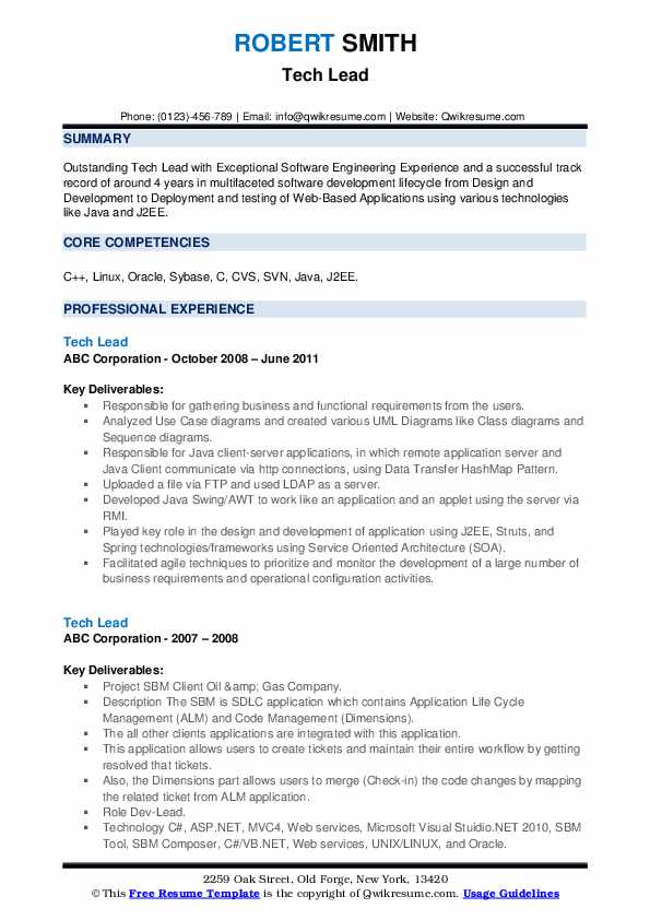Tech Lead Resume example