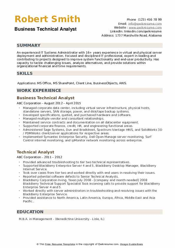 Business Technical Analyst Resume Model