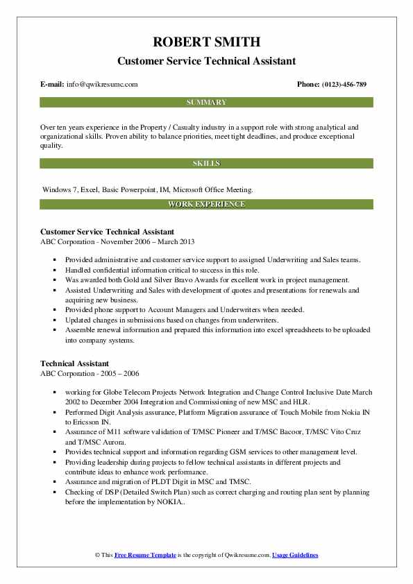 Customer Service Technical Assistant Resume Example