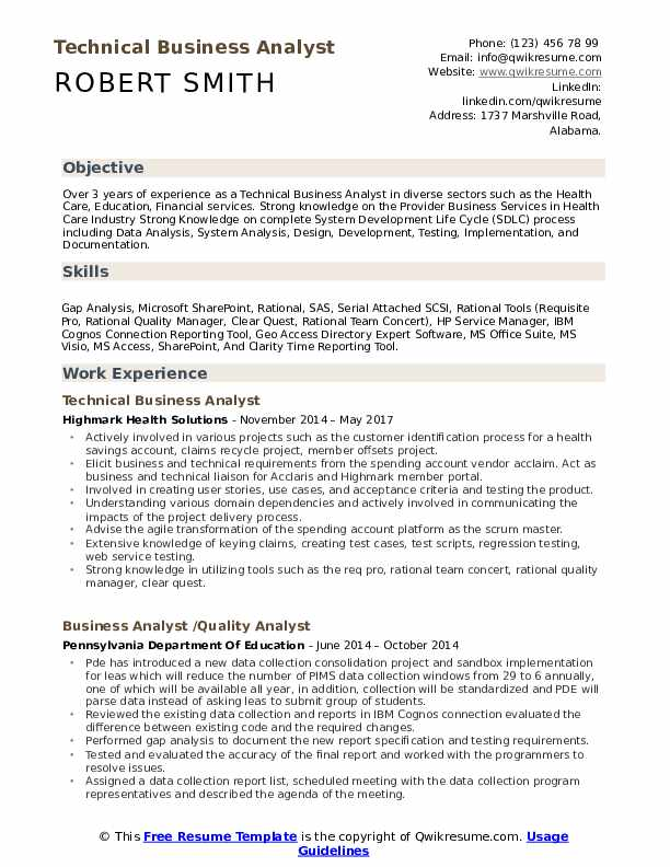 Technical Business Analyst Resume Model