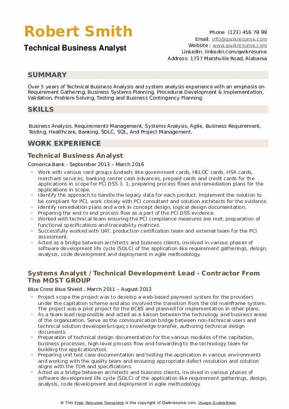 Technical Business Analyst Resume example