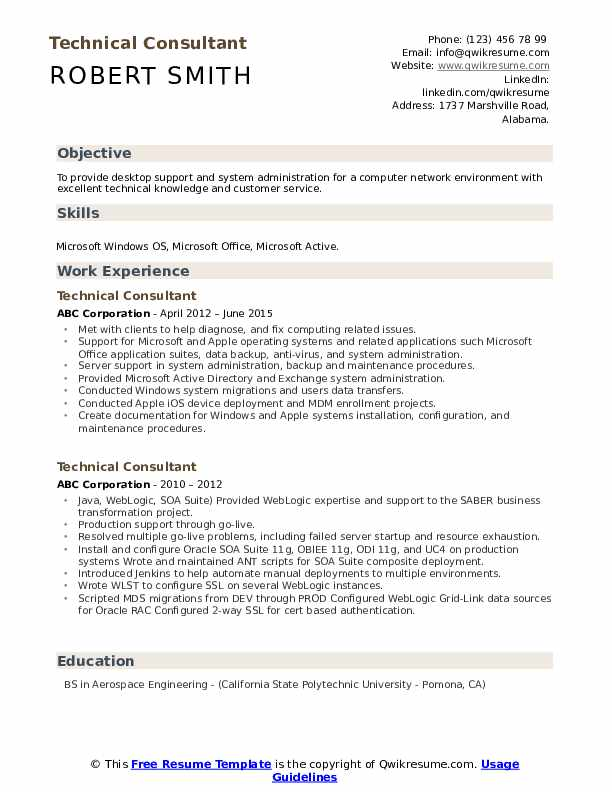 Technical Consultant Resume Format