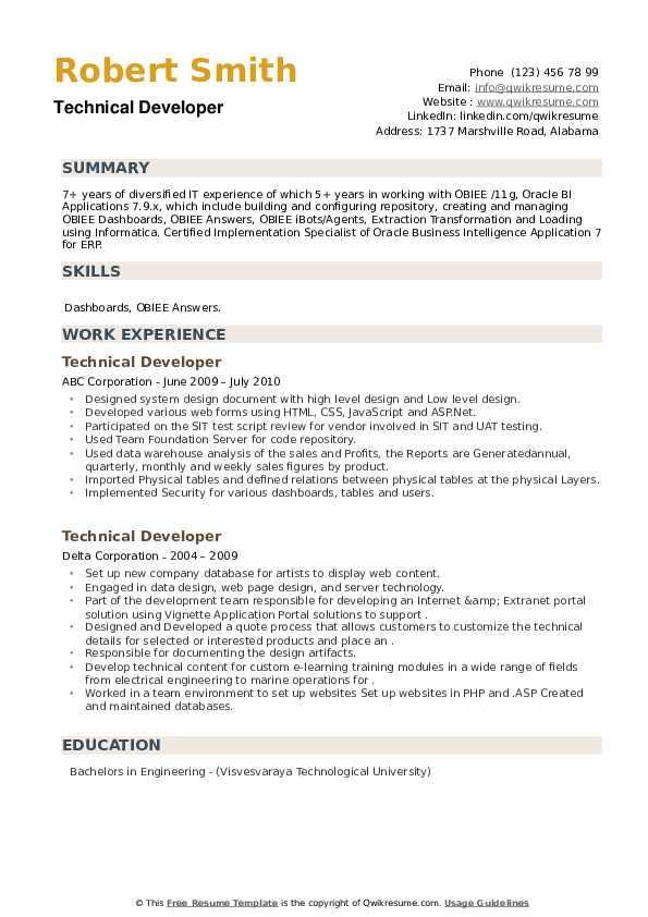 Technical Developer Resume example