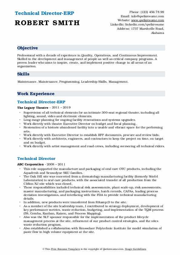 Technical Director-ERP Resume Sample