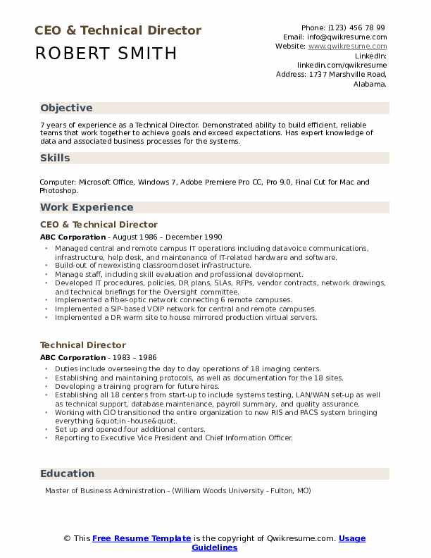 CEO & Technical Director Resume Sample