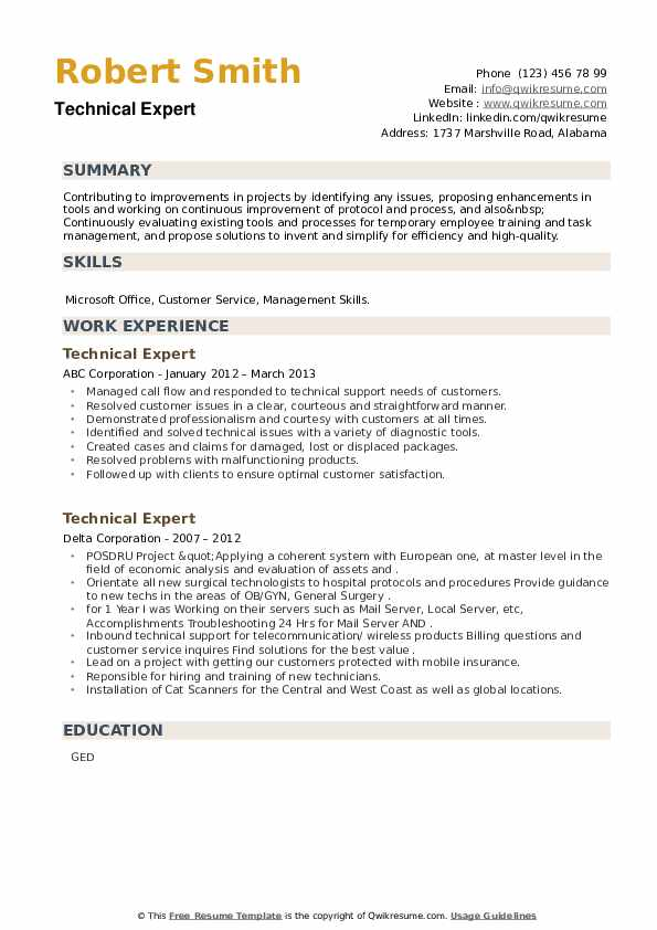 Technical Expert Resume example
