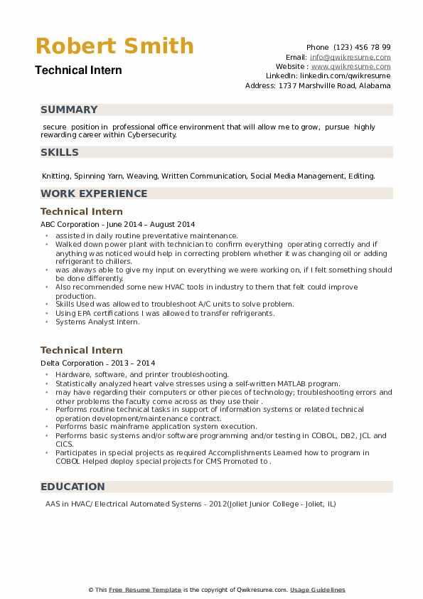 Technical Intern Resume example