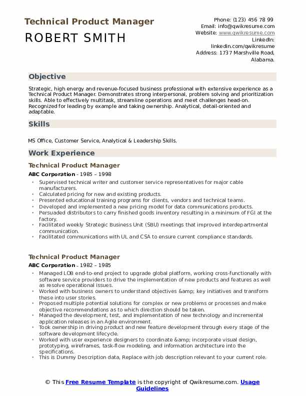 Technical Product Manager Resume example