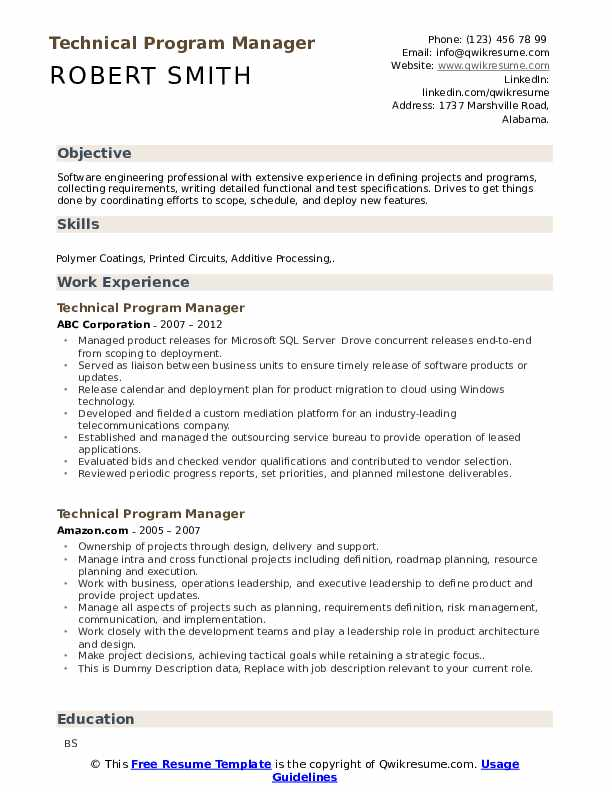 Technical Program Manager Resume example