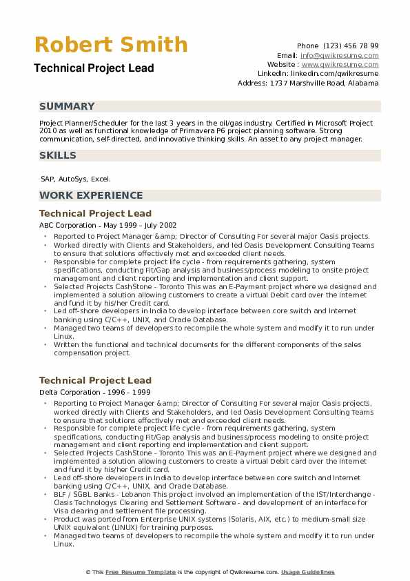Technical Project Lead Resume example