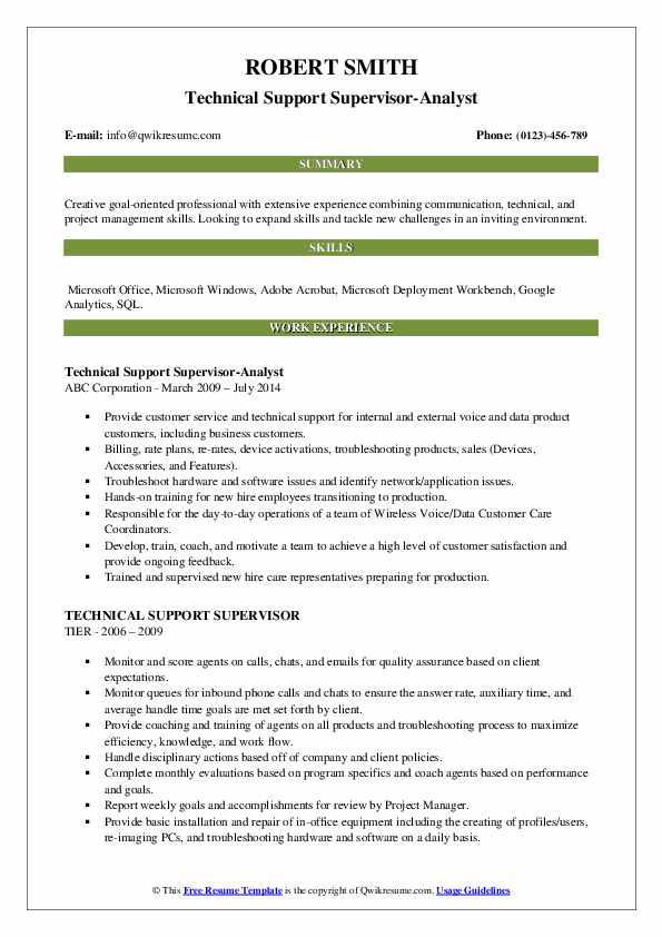 Technical Support Supervisor-Analyst Resume Example
