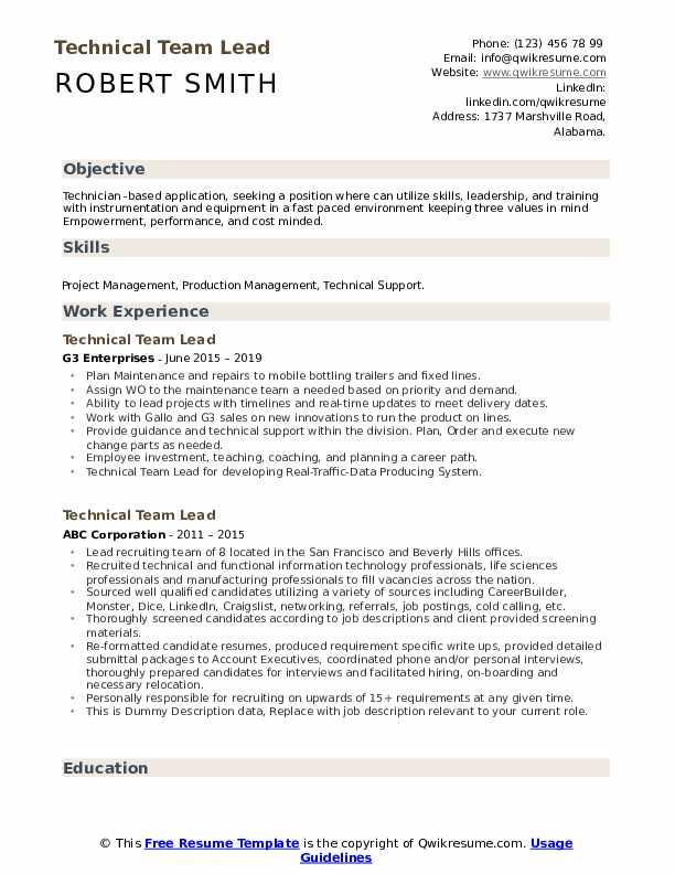 Technical Team Lead Resume example