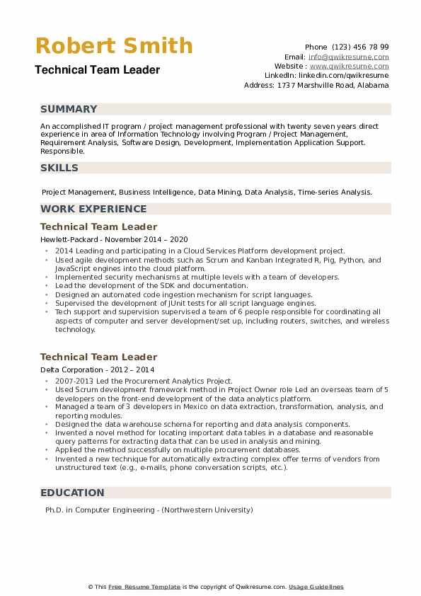 Technical Team Leader Resume example