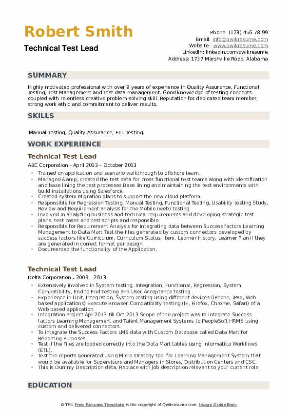 Technical Test Lead Resume example