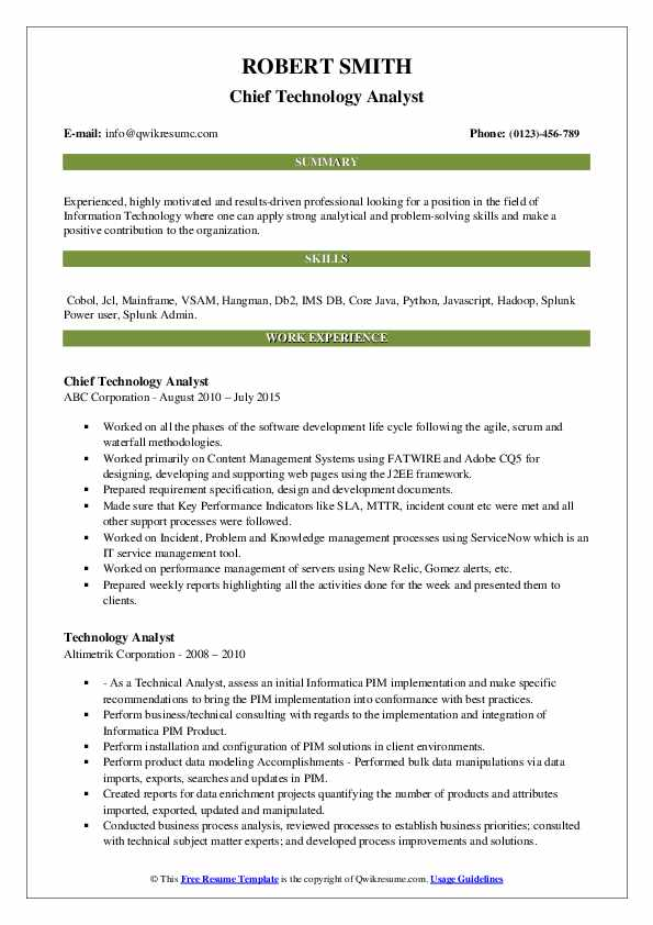 Chief Technology Analyst Resume Template