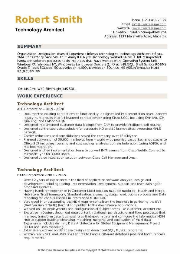 Technology Architect Resume example