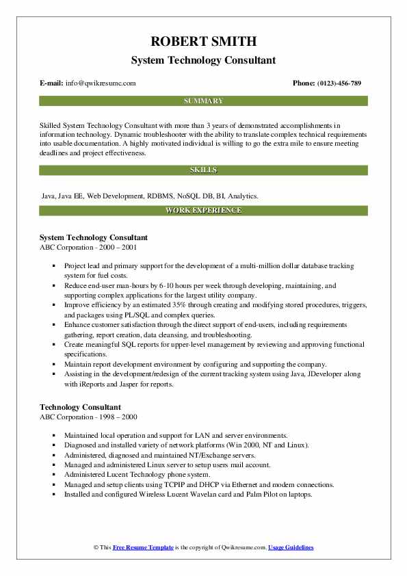 System Technology Consultant Resume Model