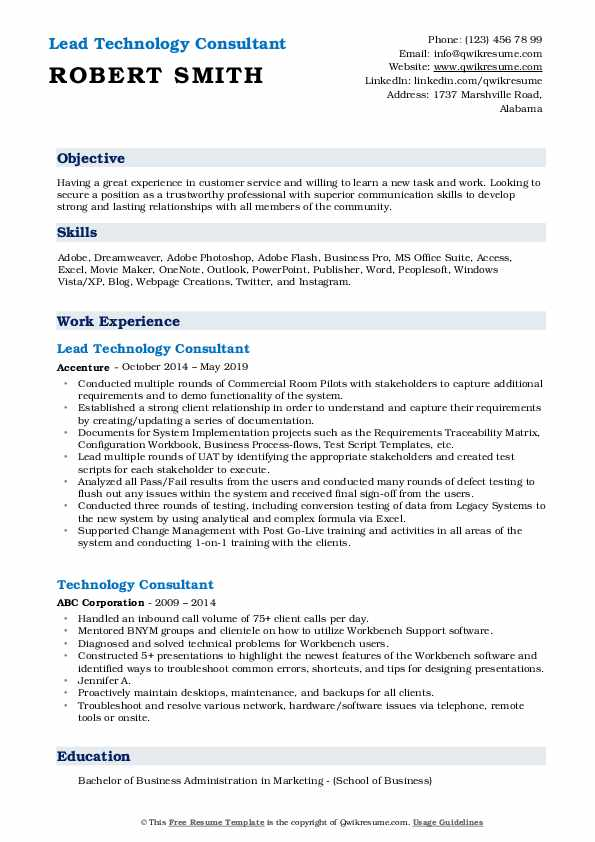 Lead Technology Consultant Resume Example
