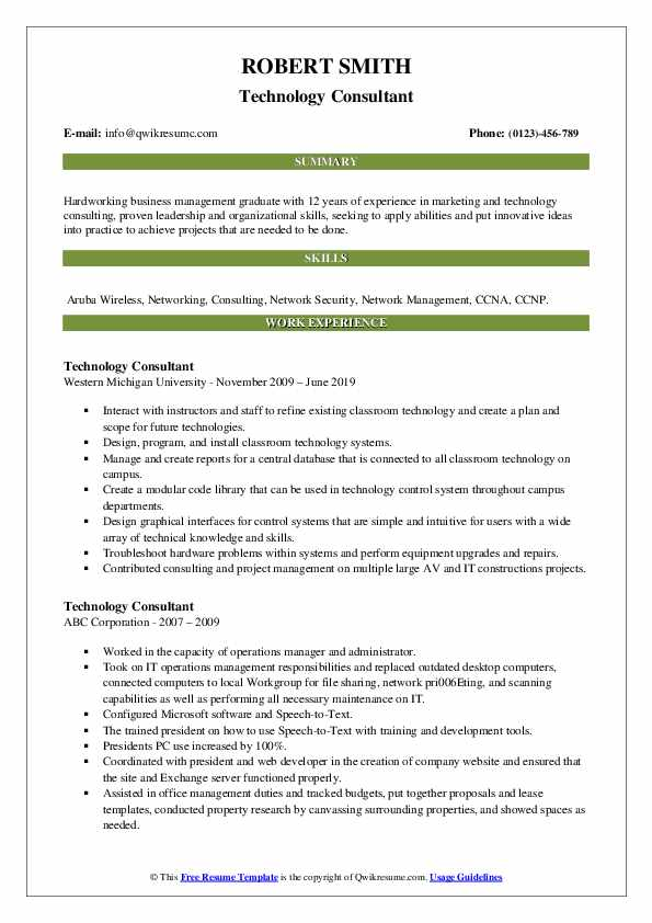 Technology Consultant Resume example
