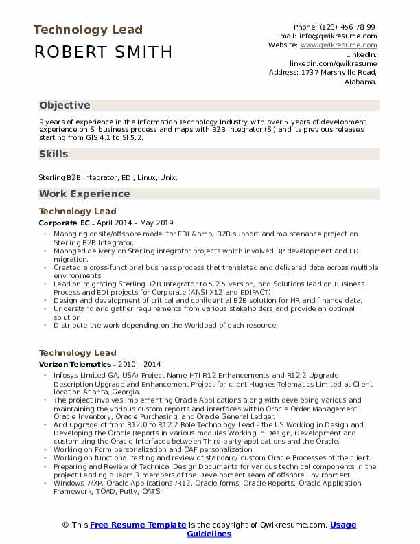Technology Lead Resume Example