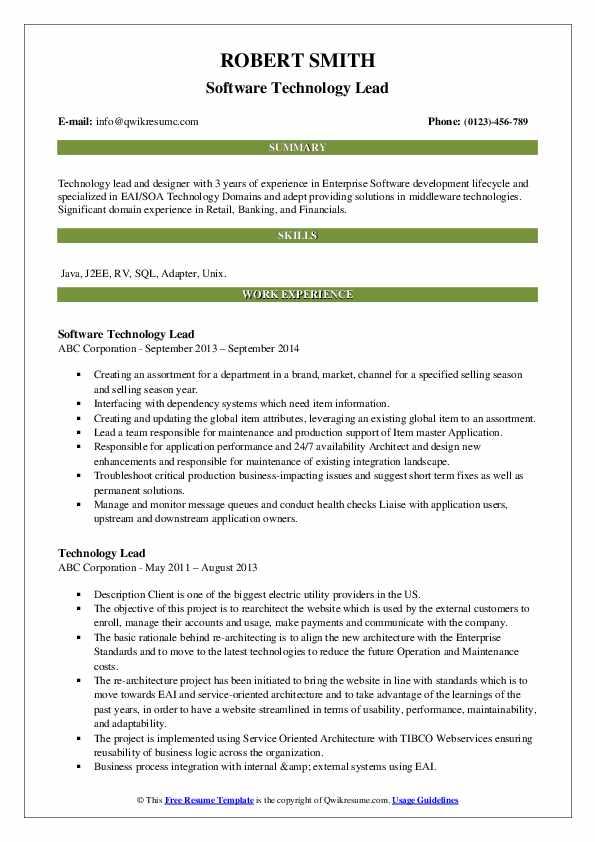 Software Technology Lead Resume Model