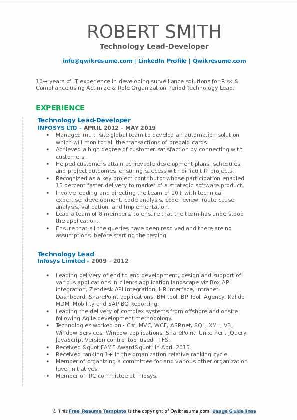 Technology Lead-Developer Resume Format