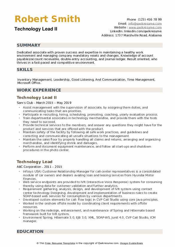 Technology Lead II Resume Format
