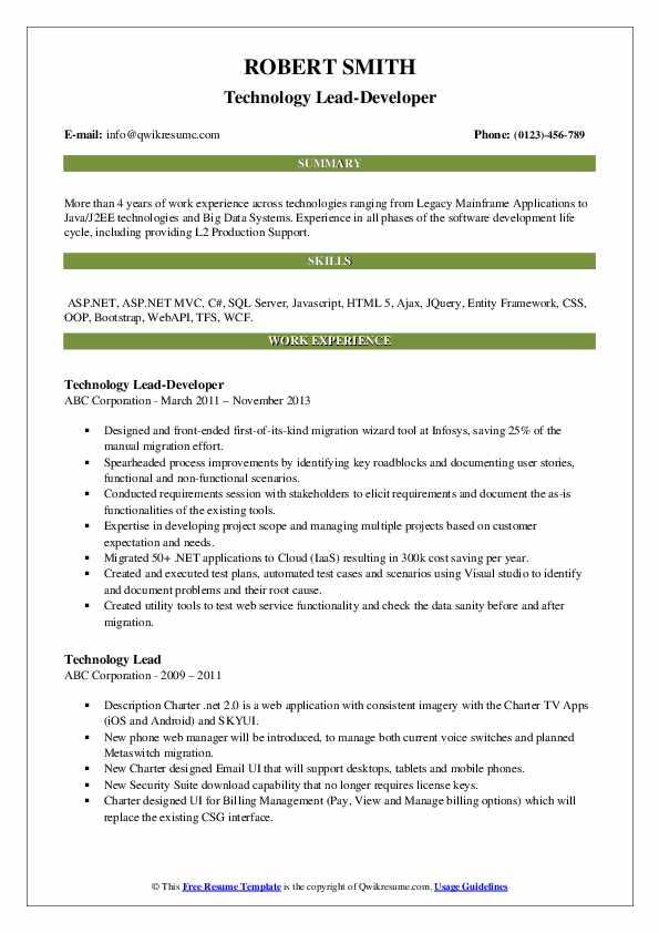 Technology Lead-Developer Resume Sample