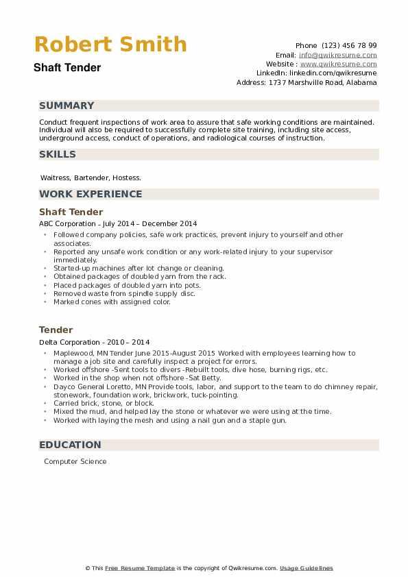 Tender Resume example