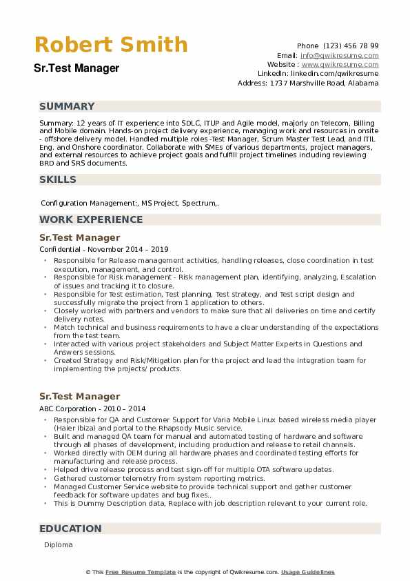 Test Manager Resume example