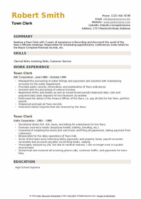 Town Clerk Resume example