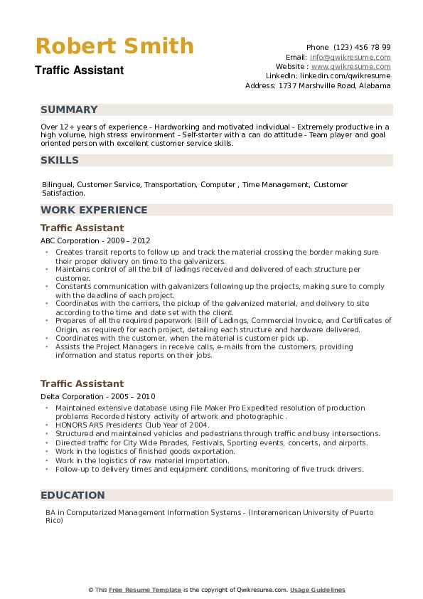 Traffic Assistant Resume example
