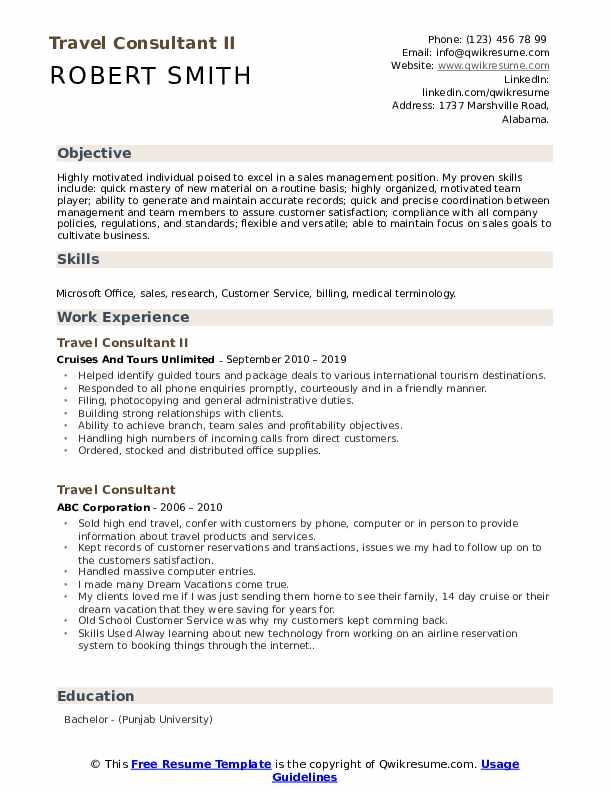 Travel Consultant II Resume Example