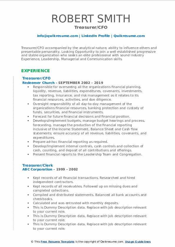 Treasurer/CFO Resume Template