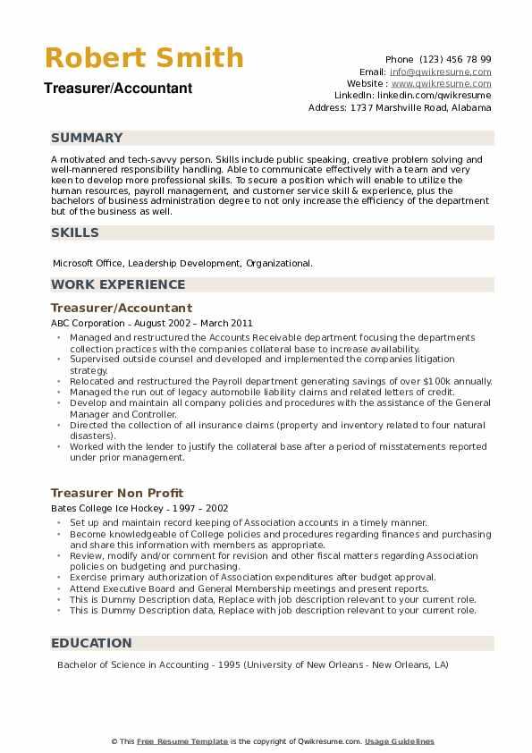 Treasurer/Accountant Resume Model