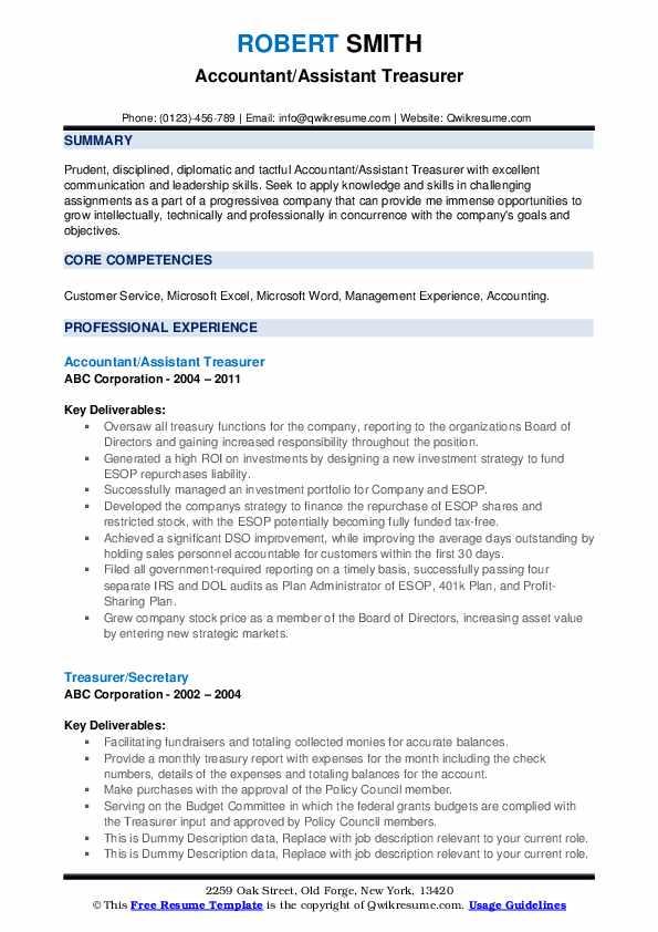 Treasurer Resume example