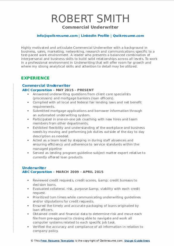 Commercial Underwriter Resume Format