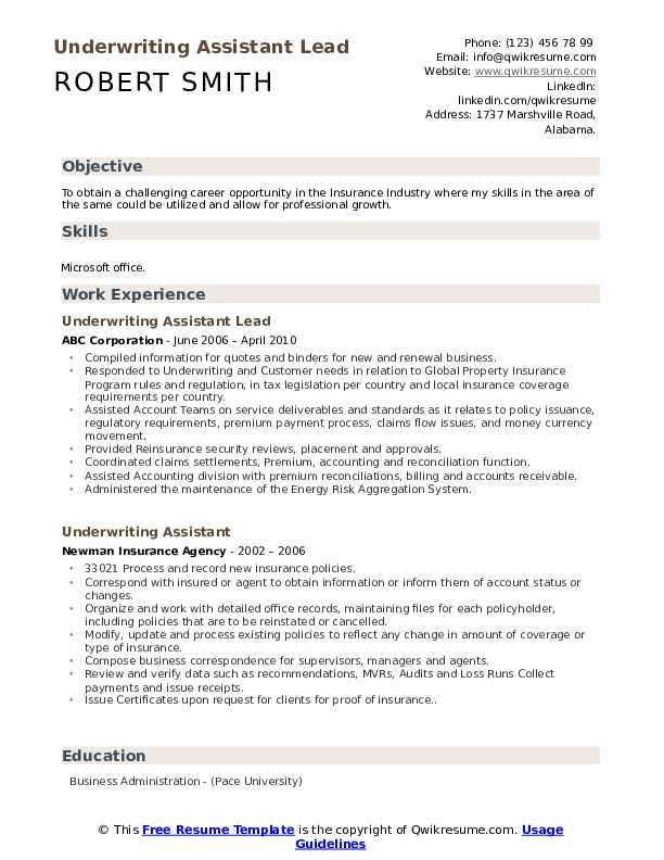 Underwriting Assistant Lead Resume Sample