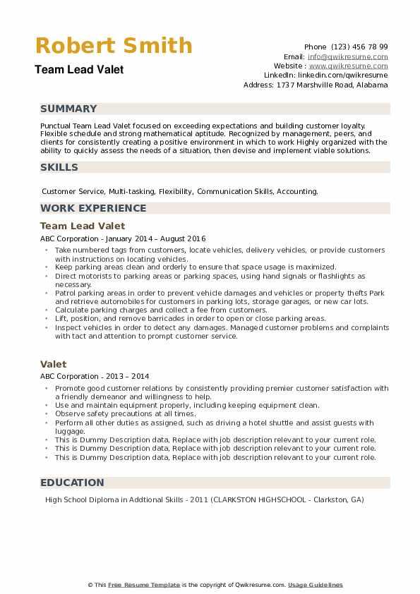 Team Lead Valet Resume Example
