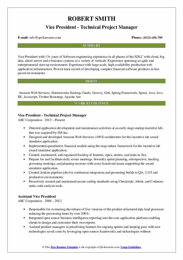 Vice President - Technical Project Manager Resume Example
