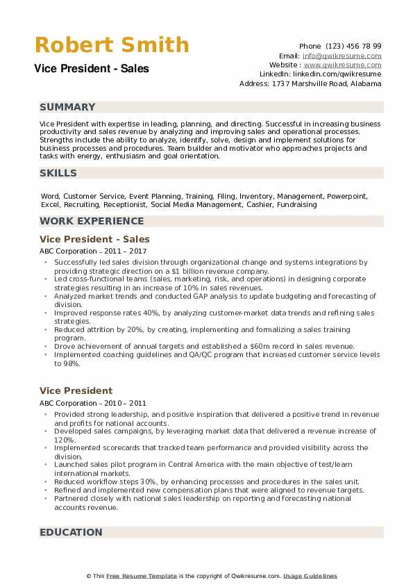 Vice President Resume example