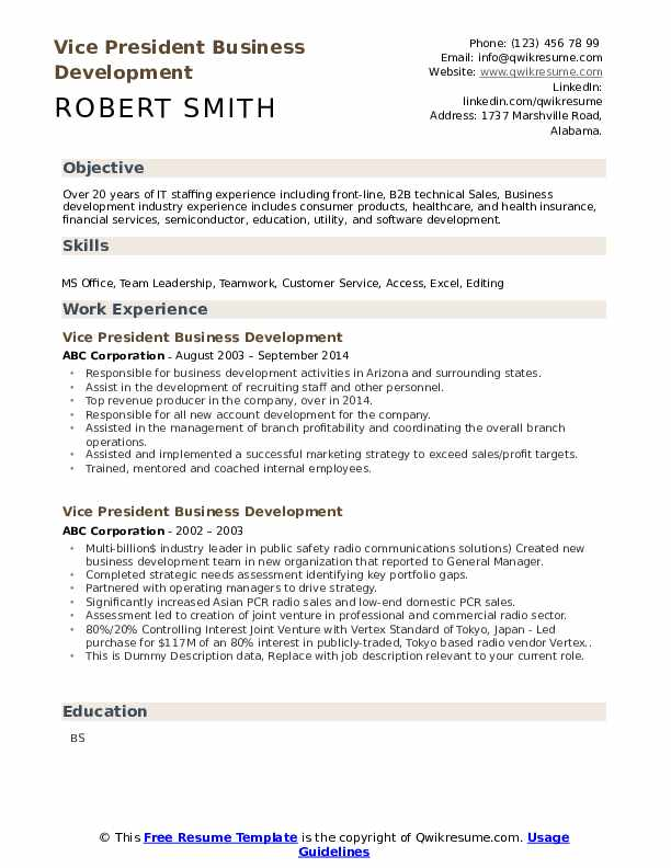 Vice President Business Development Resume example