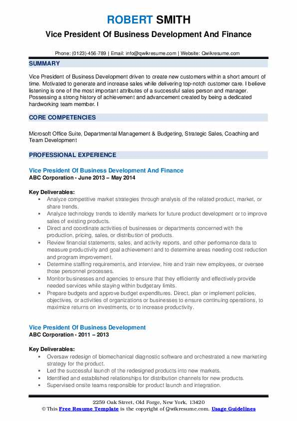 Vice President Of Business Development And Finance Resume Example