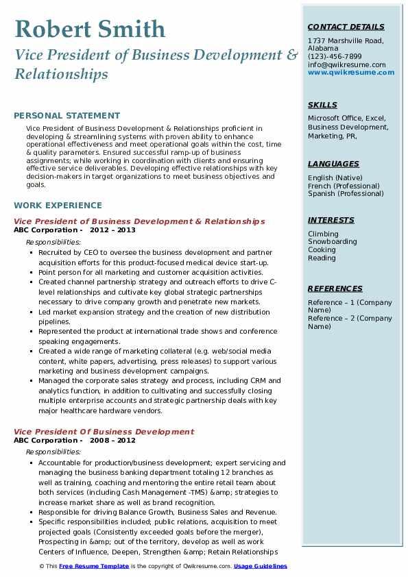 Vice President of Business Development & Relationships Resume Format