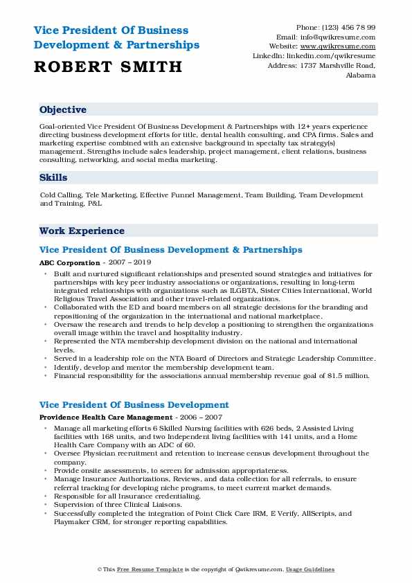 Vice President Of Business Development & Partnerships Resume Sample