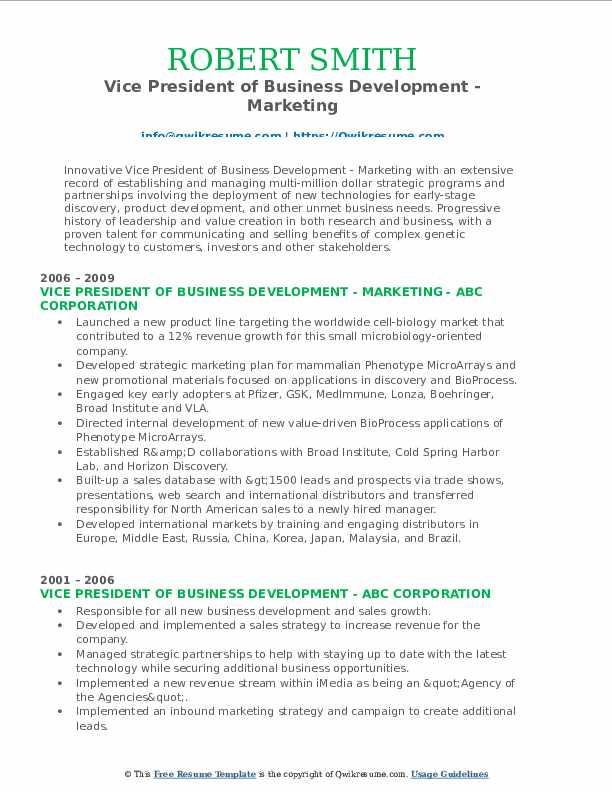 Vice President of Business Development - Marketing Resume Template